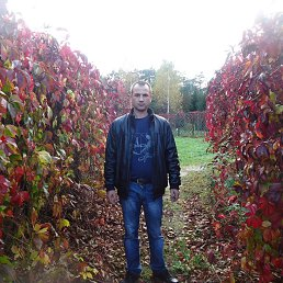Николай, Тула, 40 лет