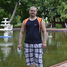 Ильинов Андрей Борисович, 37 лет, Кашира