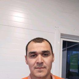 Азизбек, 34 года, Шали