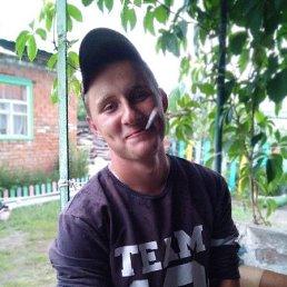 Дима, 21 год, Воронеж