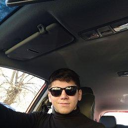 Сергей, 25 лет, Тула