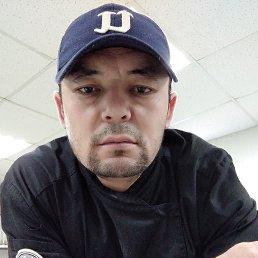 Мухиддин, 32 года, Новосибирск