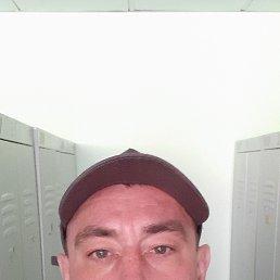 Алексей, 41 год, Уфа