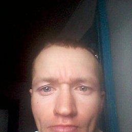 Николай, 34 года, Курган