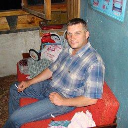 владимир, 41 год, Кольчугино