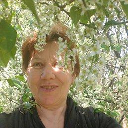 Галина, 58 лет, Олевск