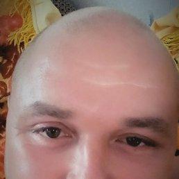 сергей, 41 год, Енакиево
