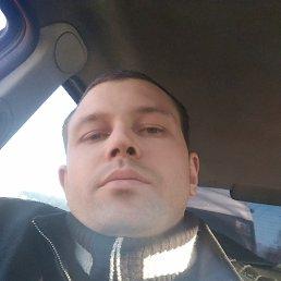 Boltik, 29 лет, Смоленск