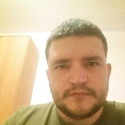 Дмитрий, 29 лет, Томск