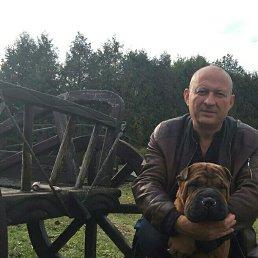 Денис, 45 лет, Белгород