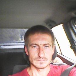 Алексей, 32 года, Калининград