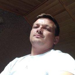 Александр, 32 года, Реутов