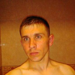 Вячеслав, 29 лет, Фастов
