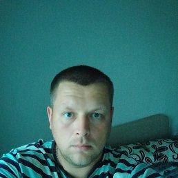 Артур, 35 лет, Калининград
