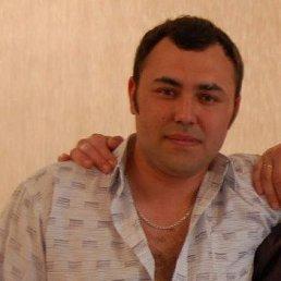 Дамир, 34 года, Оса