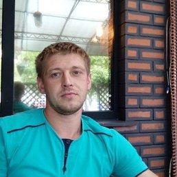 Павлик, 31 год, Мичуринск