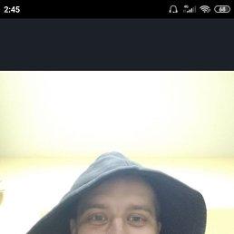 Андрей, 29 лет, Томск