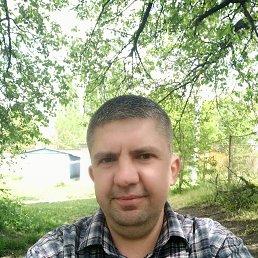 Александр, 39 лет, Кировоград