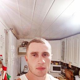 Миша, 28 лет, Ставрополь