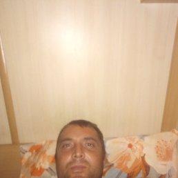 Данил, 31 год, Владивосток