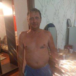 Александр, 44 года, Светлоград