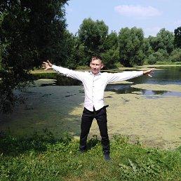 Дмитрий, 33 года, Домодедово