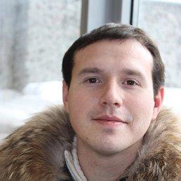 Александр, 39 лет, Лыткарино