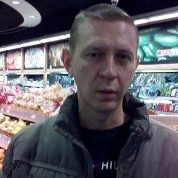 Павел, 40 лет, Тосно
