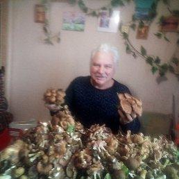 Слава, 55 лет, Пенза