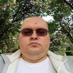 Олег, 40 лет, Наволоки