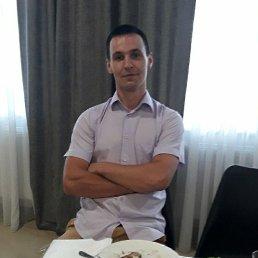 Антон, 28 лет, Борисполь