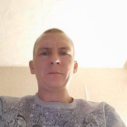 Алексей, 38 лет, Волжский
