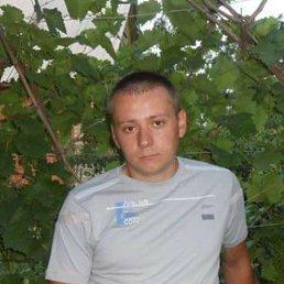 Алексей, 34 года, Константиновка