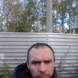 Вадим, 38 лет, Москва