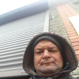 Николай, 42 года, Таганрог