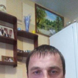 Сергей, Нижний Новгород, 38 лет