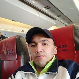 ADAMXON, 33 года, Владивосток