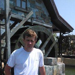 Александр, 37 лет, Батайск