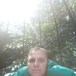 Александр, 27 лет, Курск