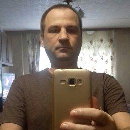 Николай, 38 лет, Тула