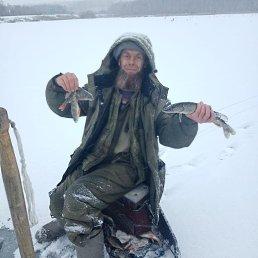 Андрей, 53 года, Красноярск