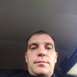 Юрий, 39 лет, Новочеркасск