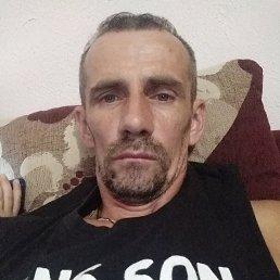 Михаил, 40 лет, Ужгород