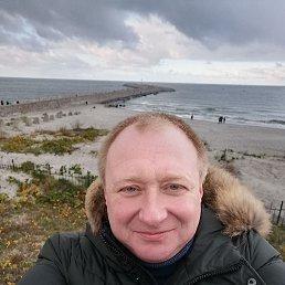 Алексей, 38 лет, Калининград