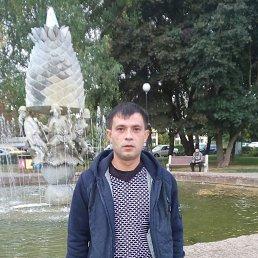 Максим, 35 лет, Алексин