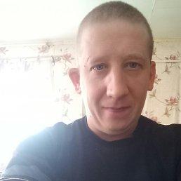Александр, 39 лет, Куса