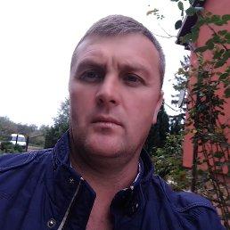 Сергей, 41 год, Калининград