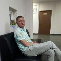Александр, 39 лет, Сертолово