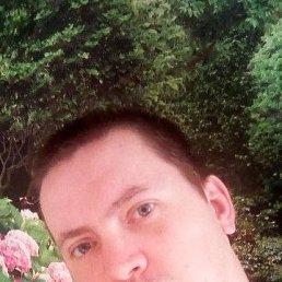 Андрей, 32 года, Волхов
