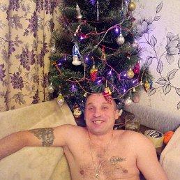 Виталик, 38 лет, Ливны